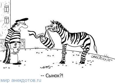 анекдот про зебру