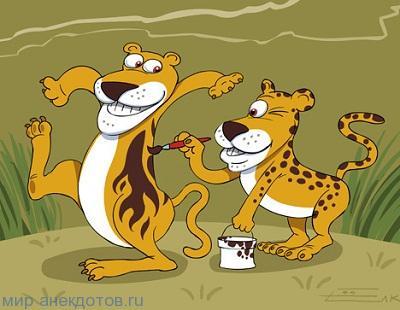 анекдот про леопарда
