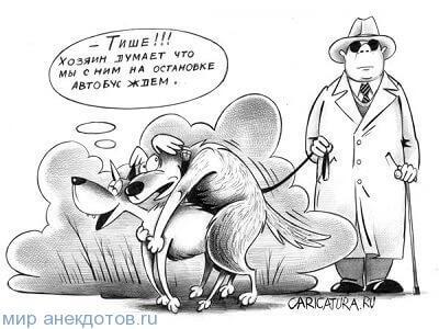 анекдот про пса
