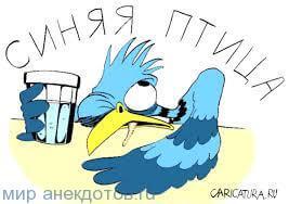 анекдот про птиц