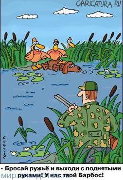анекдот про уток