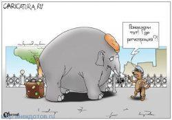 Анекдоты про слона