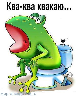 Анекдоты про лягушку