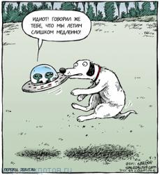 Смешные анекдоты про тарелку
