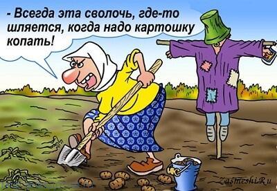 прикольный анекдот про бабу