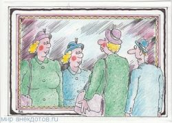 Лучшие анекдоты про зеркало