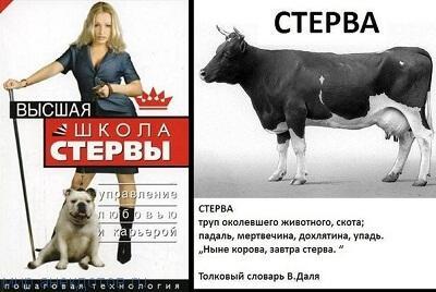 веселый анекдот про стерву