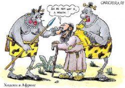 Смешные анекдоты про Африку