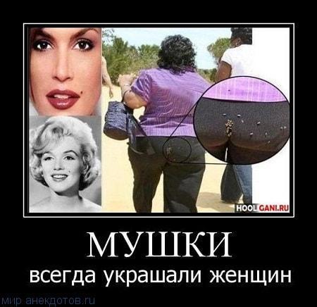 веселый демотиватор про женщин