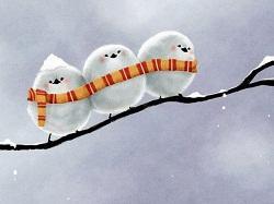 Забавные шутки про зиму