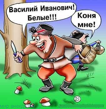 Лучшие анекдоты про Василия Ивановича