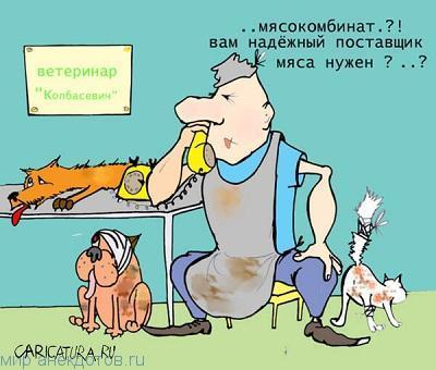 Смешные анекдоты про ветеринара