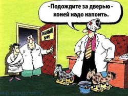 Смешные анекдоты про главврача