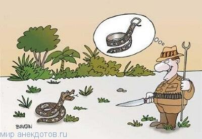 Смешные анекдоты про змею