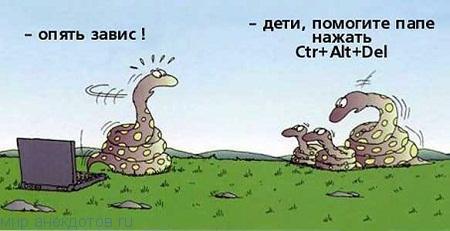 Лучшие анекдоты про змею