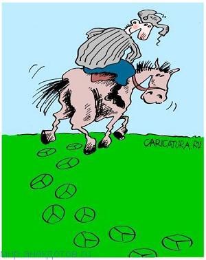 Смешные анекдоты про коня