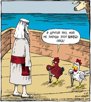 Лучшие анекдоты про курицу