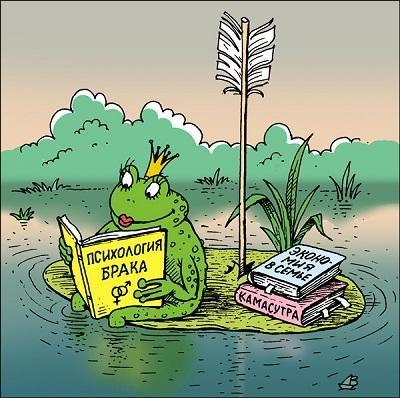 Прикольные анекдоты про лягушку