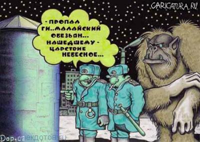 Смешные анекдоты про обезьяну