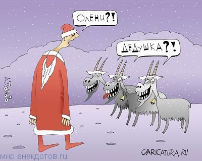 Веселые анекдоты про оленя
