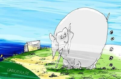 Лучшие анекдоты про слона