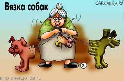 Веселые анекдоты про собак