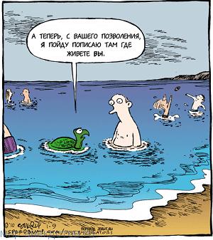Прикольные анекдоты про черепаху