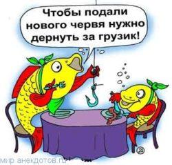 Анекдоты про червей