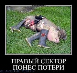 смешной демотиватор про украину
