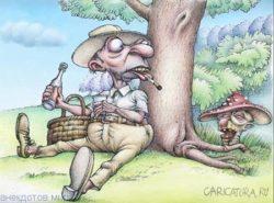 Веселые анекдоты про грибы