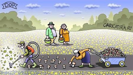 Забавные анекдоты про грибы