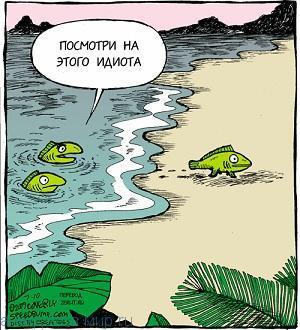Смешные анекдоты про рыбу