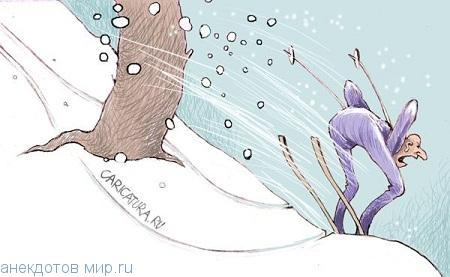 смешной анекдот про лыжи