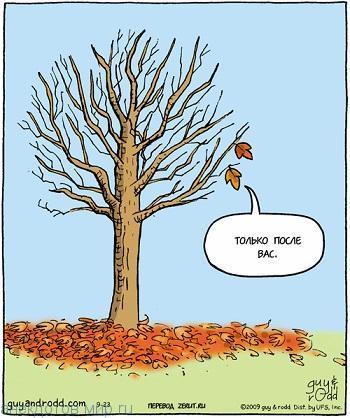 Очень смешные анекдоты про деревья
