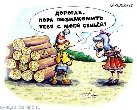 Смешные анекдоты про дрова