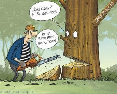 Очень смешные анекдоты про дрова