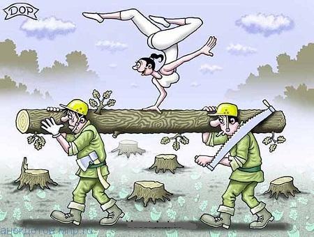 анекдот про дровосеков