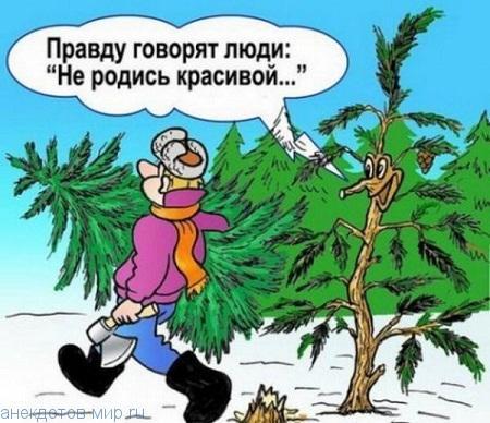 смешной анекдот про елку