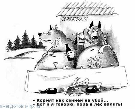 Самые смешные анекдоты про лес