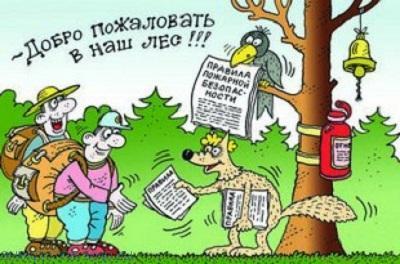 Лучшие анекдоты про лес