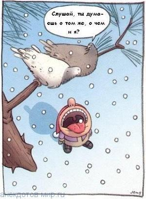 Анекдоты про снежинки