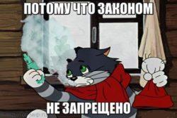 Мемы про кота Матроскина