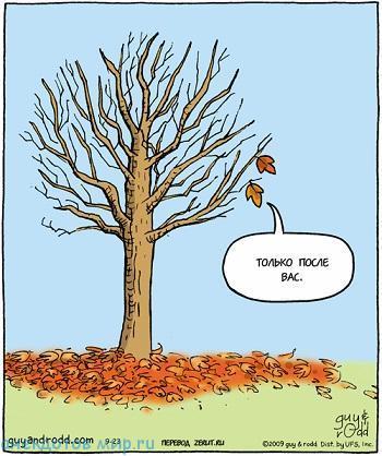 Смешные анекдоты про осень