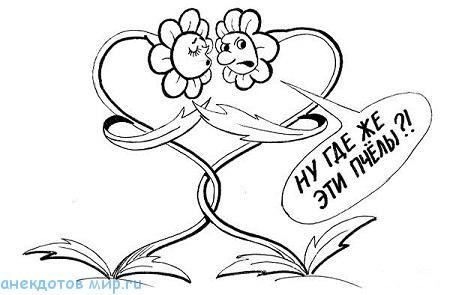 анекдот про растения