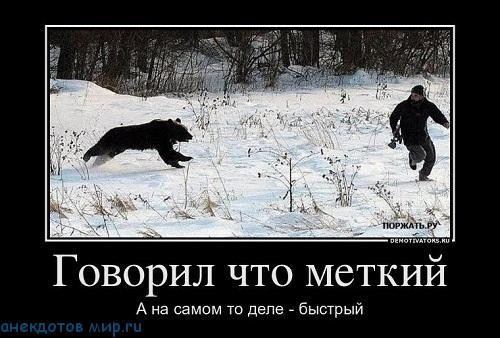 демотиватор про животных