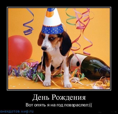 Демотиваторы про День Рождения