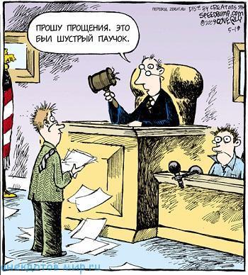 Свежие анекдоты про судей
