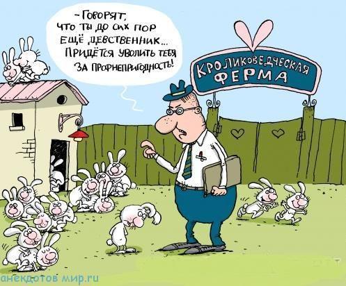 карикатура прикол