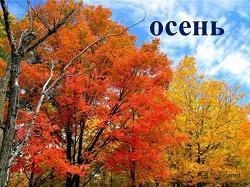 Народные пословицы и поговорки про осень