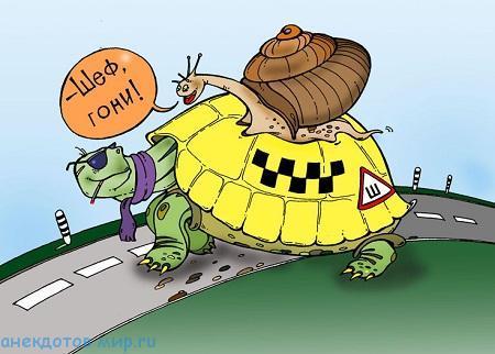 Анекдоты про такси